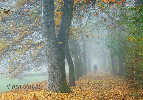 Podzimní procházení