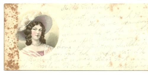 Tvrdá kartička s psaním Milá Trůdinko...