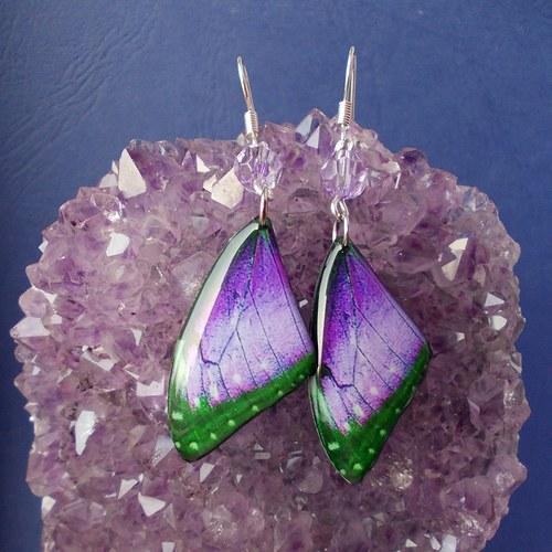 Náušnice motýl - mot10