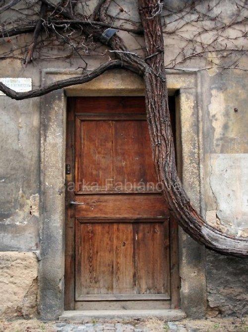 Kouzelné dveře
