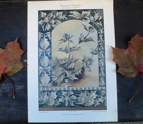 Ornament - litografie kol. r. 1890 /No. 2/