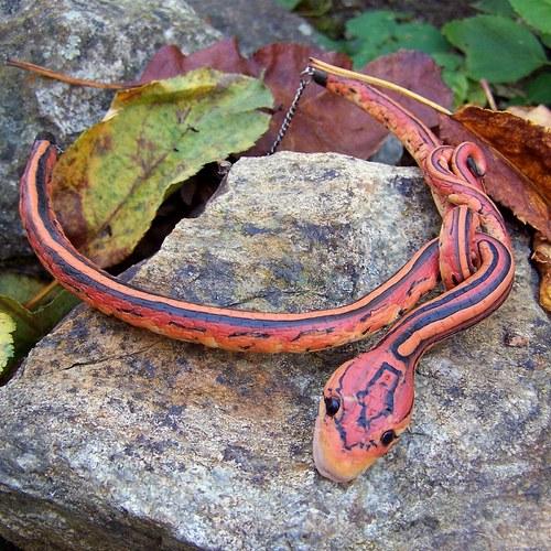 Pro milovníky hadů
