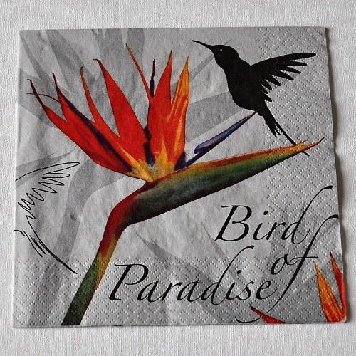 Ubrousek - Bird of Paradise