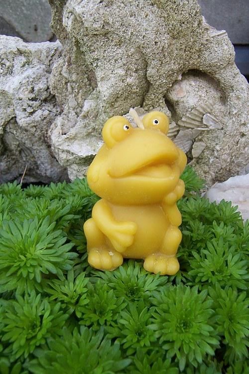 Svíčka žába 100%včelí vosk