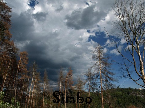 Před bouří SLEVA