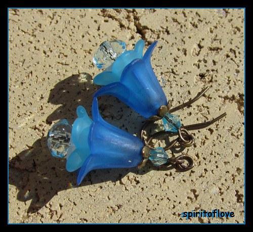 Flowers no.7 Holodovec Modroměnný
