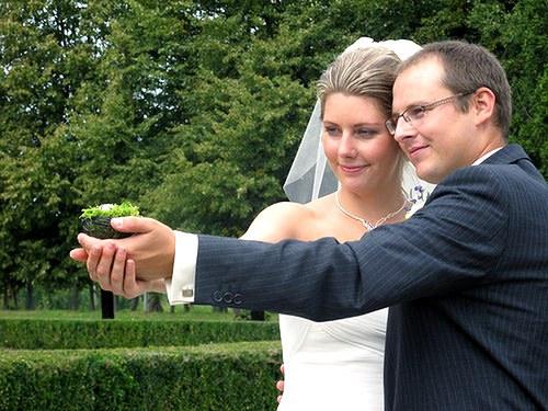 Svatební hnízdo na prstýnky