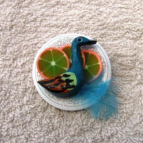 Kachna na pomerančích