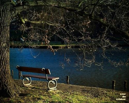 Čekání na jaro - autorská fotografie