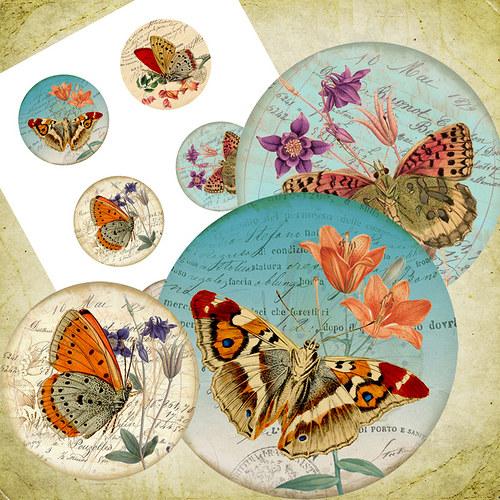 Nažehlovací obrázky- Motýlci - 6 kusů