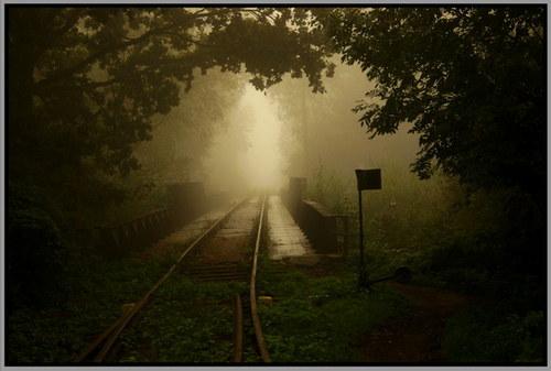 Mlha na kolejích