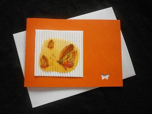 Přání-motýlci k různým příležitostem.