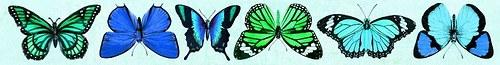 Oboustranný Papírový pásek - motýli My Precious