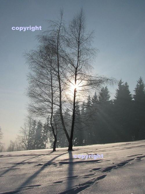 Světlo a stíny