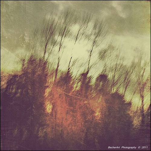 Ethereal Solitude I