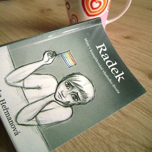 Radek (KNIHA)