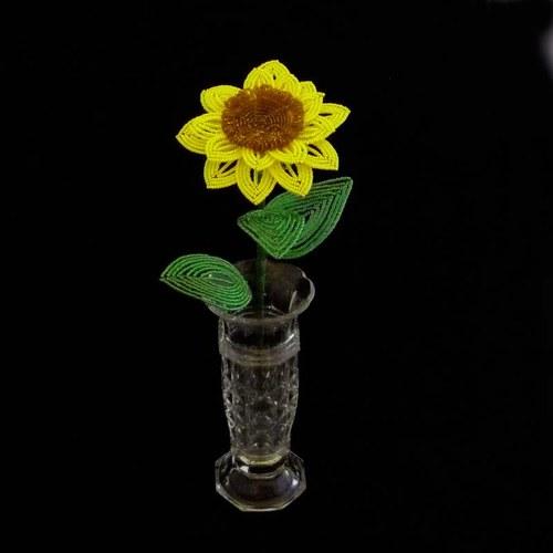 Slunečnice korálková