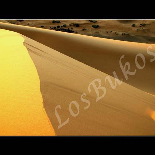 Hřeben duny