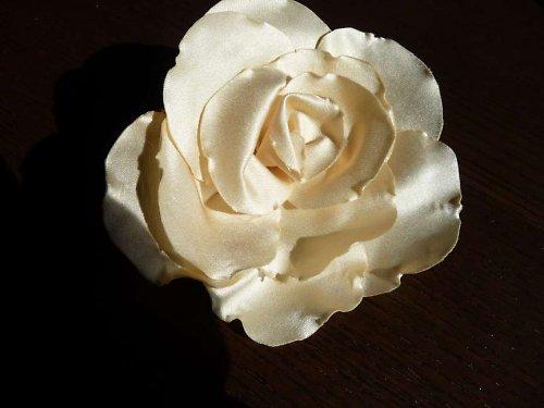 Šampaň saténová růže