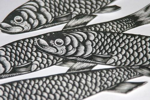 Rybky - nažehlovací obrázky