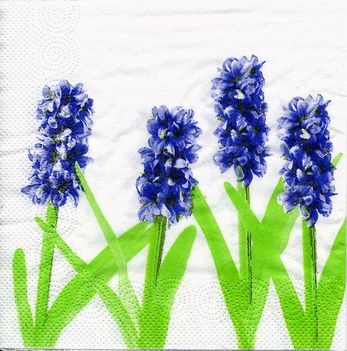 Ubrousek s hyacinty