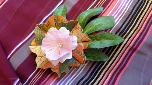 Hnědozelená hvězdička s růžovým květem