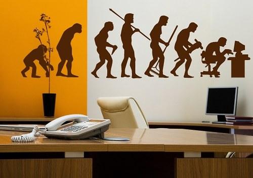 Samolepka na zeď - Evoluce (75 x 25 cm)