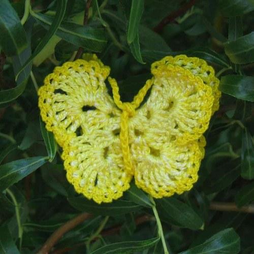 Háčkovaní motýlci