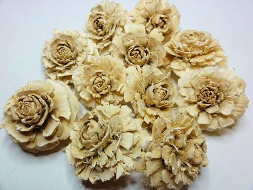 Cedrová růže