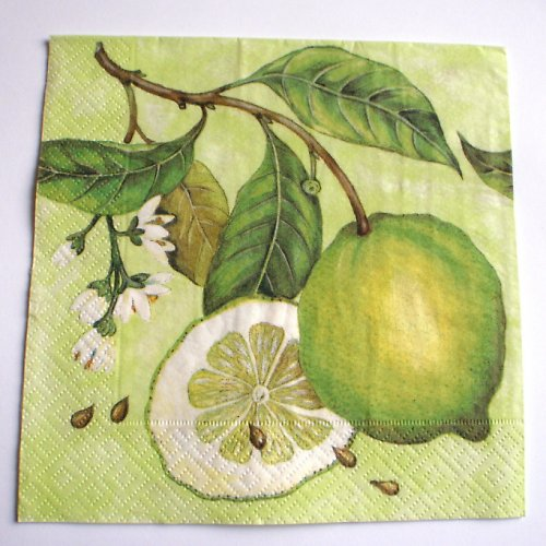 Ubrousek citronový
