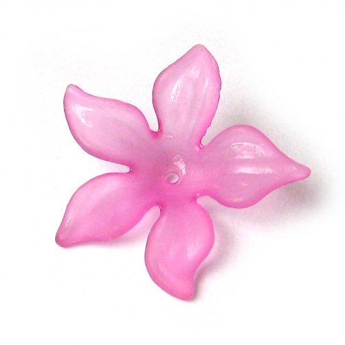 Květ velký tmavě růžový