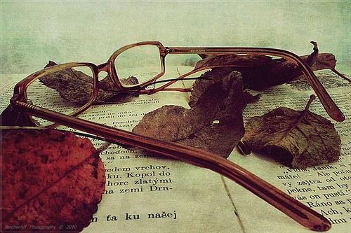 Autumn Memories I