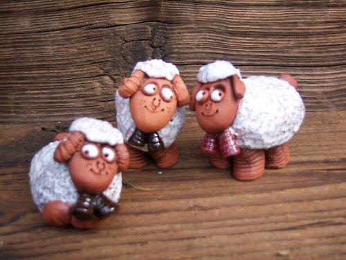 beránek ovečka
