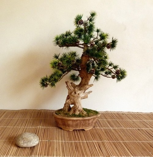 Umělá bonsaj BOROVICE, dekorace do interieru