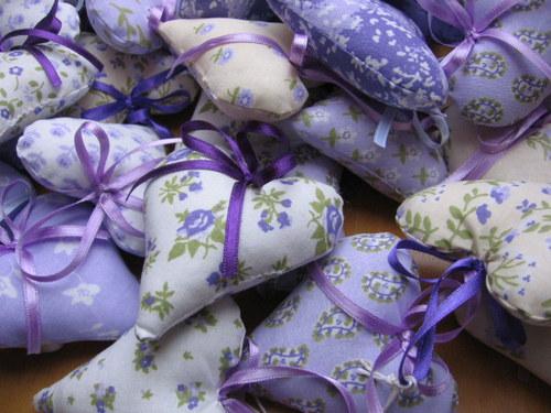 srdíčka fialová - s pravou letošní levandulí