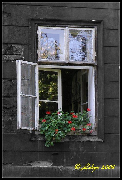 Okno na Kampě
