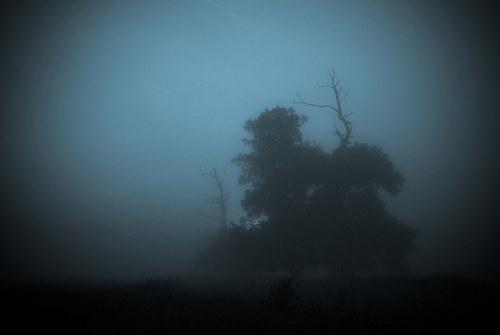Temné,mlhavé ráno