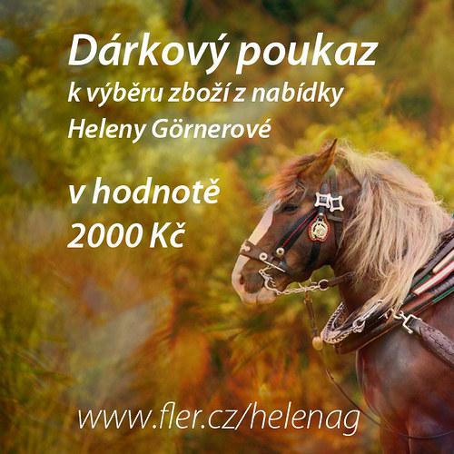 Nákupní poukaz 2100 Kč u prodejce HelenaG