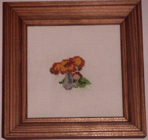 Vyšívaný obrázek - houba