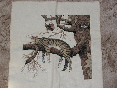 kocour na stromě