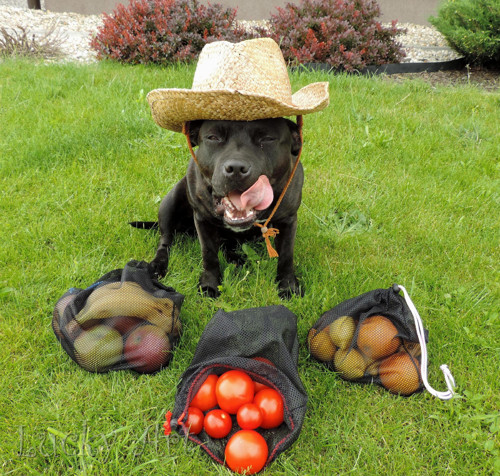 Praktické pytlíčky na ovoce a zeleninu - střední