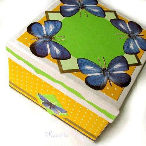 Modrásci na pampeliškové louce - krabička