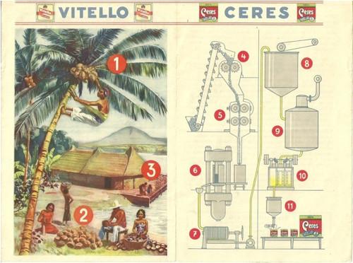 Reklamní okénko pro děti Kokosová palma