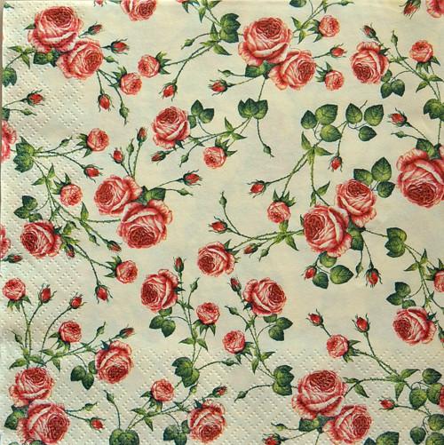 Růže vintage IX.