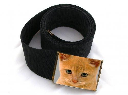 Opasek  kočka