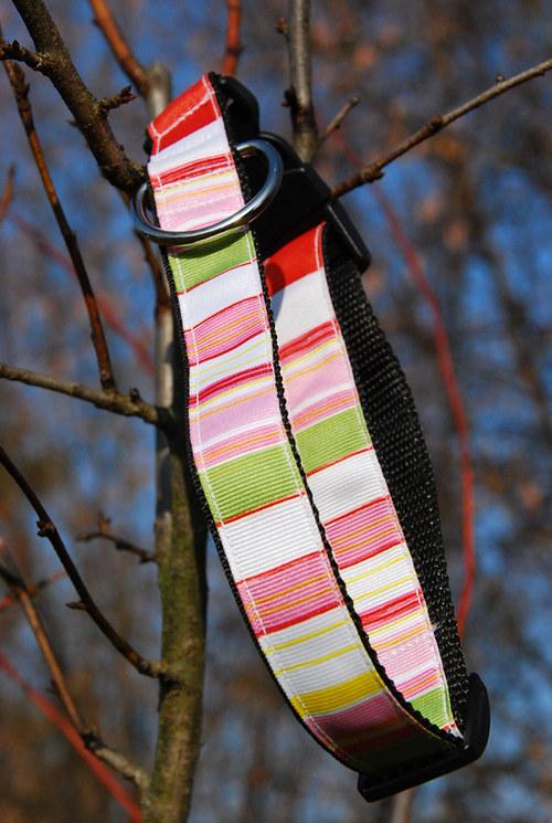 Obojek klasický - barevné proužky