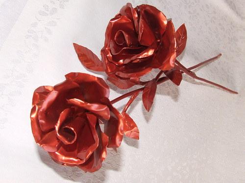 Růže měděná