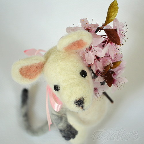 Myška Květka je v tom až po uši...?