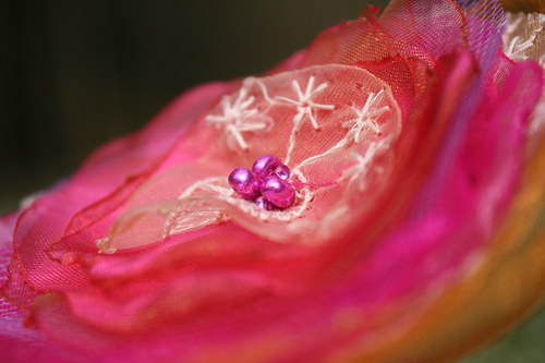Růžovo žlutá s krajkou