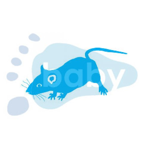 Razítko myš 5,5 x 3 cm